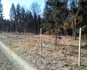 Wildzaunbau mit Eichenpfosten